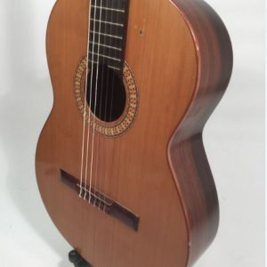 modern acoustic guitars